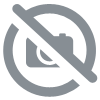 Tableau New-York Brooklyn Bridge et corvette chevrolet rouge